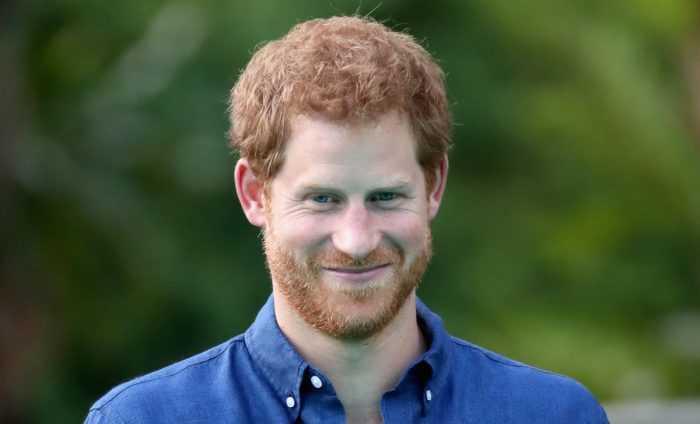 Фотографии принца Гарри, играющего со своей собакой на заднем дворе - постановочные?